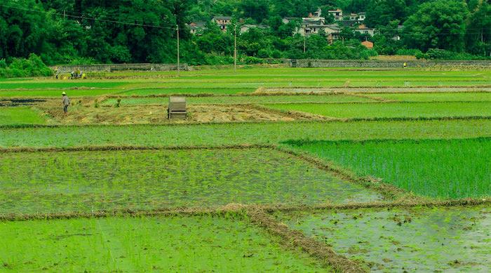 农村土地征用补偿的标准