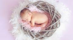 新生兒上戶口需要的證件有哪些