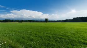 怎么處理農村征地補償糾紛