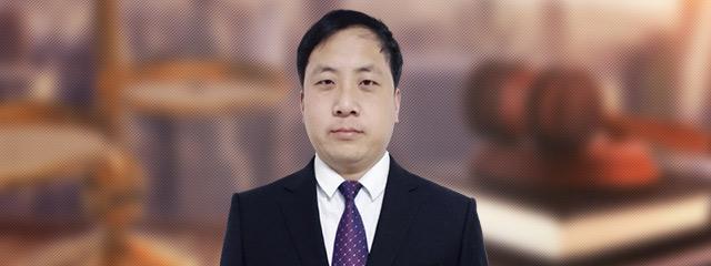 保定律師-王林