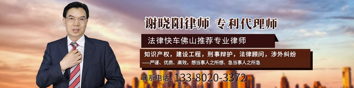 禅城区律师-谢晓阳律师